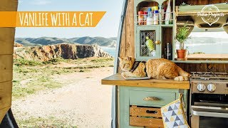 Van Life With a Cat! Portugal Roadtrip Ep. 2