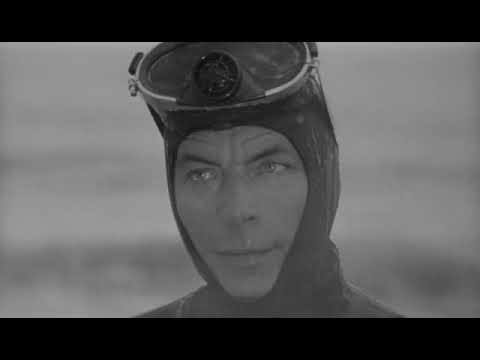 The Flesh Eaters (1964) - Martin Kosleck Movie - Horror Movi