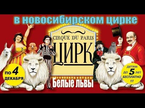 Песня о цирке