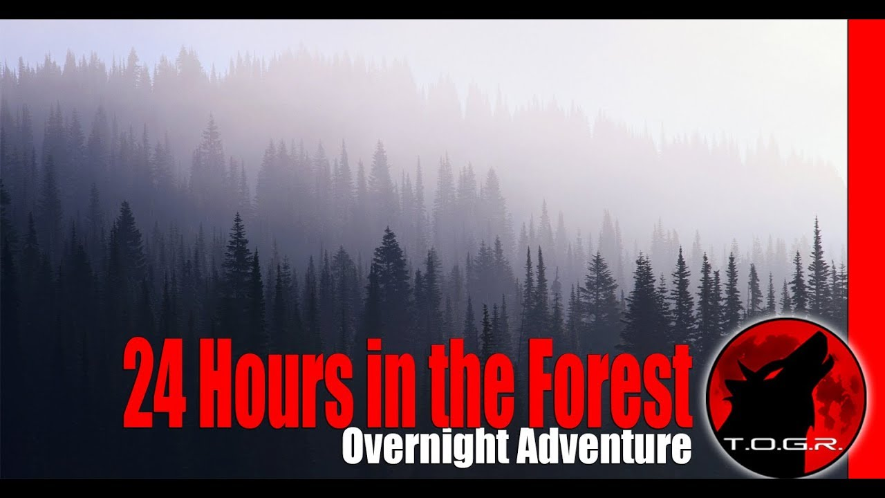 24-hours-in-the-forest-overnight-adventure-4k