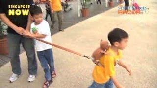 Kids on the leash (Kids on a leash! Pt 3)