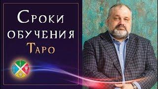 За какое время можно научиться гадать на Таро? Обучение Таро в минимальный срок | Русская Школа Таро