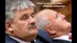 Tomáš Klus- pánu bohu do oken (slovak version)