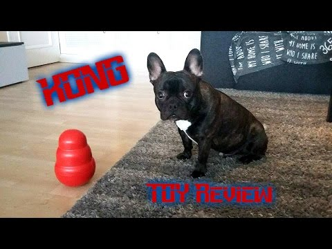 Dog Trying Some KONG Dog Toys: Toy Review