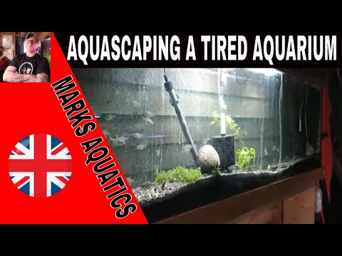 Aquascaping My Tired Old Aquarium