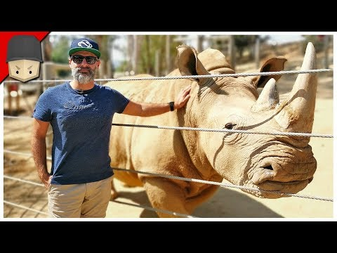 Planet Zoo In Real Life!
