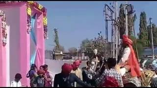 vuclip Indian wedding horse dance in best stunt full hd video 2017