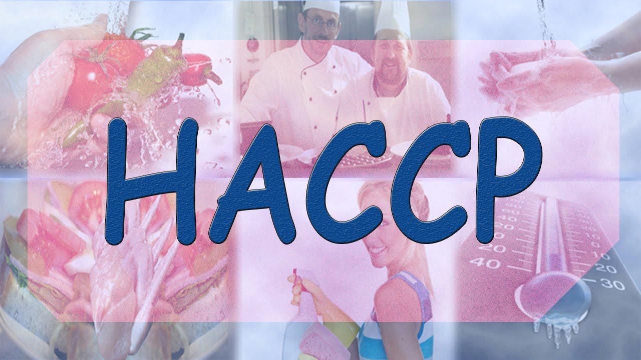 Haccp Hazard Analysis Critical Control Points Youtube