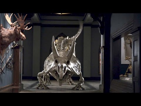 'Triceratops' NIGHT AT THE MUSEUM 3 Movie Clip