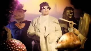 PETRI NYGÅRD: PÄÄSTÄ(N) HÖYRYY [VIRALLINEN VITUN MUSAVIDEO!!!]