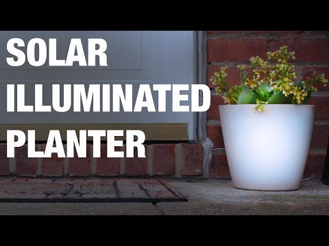 Solar Illuminated Planter