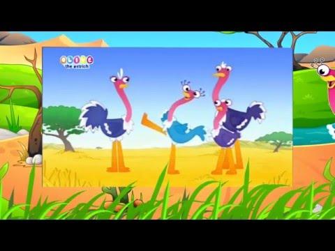 Оливия страус мультфильм