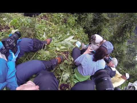 Gerling Safaris in Rwanda