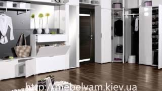 Современная мебель для прихожей(Современная мебель для прихожей отличается своей функциональностью, компактностью и эргономичностью...., 2014-03-26T10:56:55.000Z)
