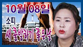 2020년 10월 08일 오늘의 운세 소띠 새출발 하기 좋은날 선미보살 ☎010-4354-7730 서울 용한…