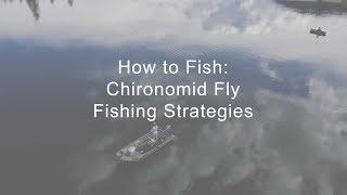 How to Fish: Chironomid Fly Fishing Strategies | GoFishBC
