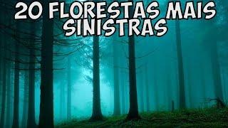 As 20 Florestas mais Sinistras do Mundo