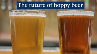 How to make a hoppy beer - without the hops