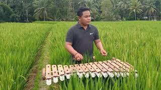 Download Rindik Bali | Testing tempat baru