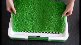 Лоток для собак с травой puppy potty trainer pad туалет для собак, 1007395