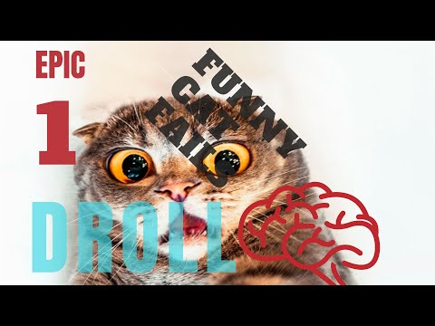 Funny Cat Fails Compilation 1 || by DROLL
