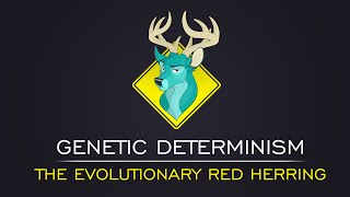 TL;DR - Genetic Determinism: The Evolutionary Red Herring