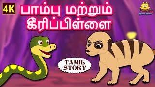 பாம்பு மற்றும் கீரிப்பிள்ளை - Bedtime Stories for Kids | Fairy Tales in Tamil | Tamil Stories
