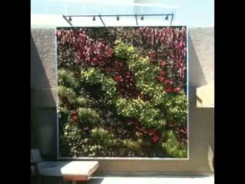 Vertical green wall system ideas - YouTube