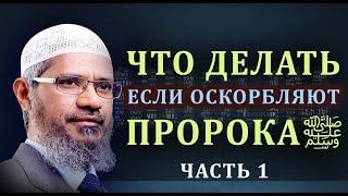 15 способов защитить пророка Мухаммадаﷺ и Ислама от нападок и оскорблений Закир Найк