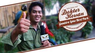 DUNIA HOBI : Dokter Hewan Ganteng di Bird Park Gembira Loka Zoo