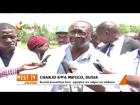 Chanjo kwa mifugo, Busia