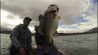 10 lber on a swimbait at clearlake