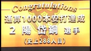 読売ジャイアンツ 陽岱鋼 東京ヤクルトスワローズ 原樹理.