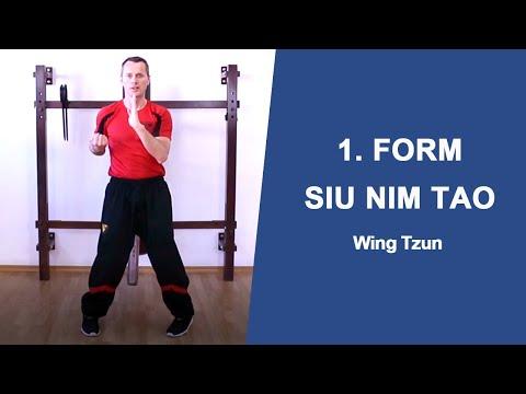 Wing- Tsun Form lernen in 20 min/Siu Nim Tao Form schnell und richtig lernen