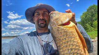 صيد انواع جديدة من السمك الجزء الأول #1