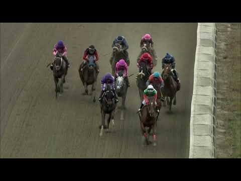 video thumbnail for MONMOUTH PARK 10-24-20 RACE 8