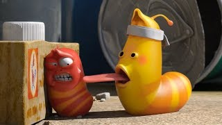 LARVA - CATCH ME IF YOU CAN | Cartoons For Children | LARVA Official