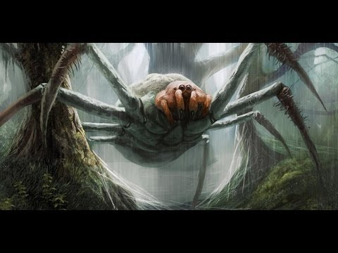 Cryptids and Monsters:  The J'Ba Fofi, the Congolese Giant Spider