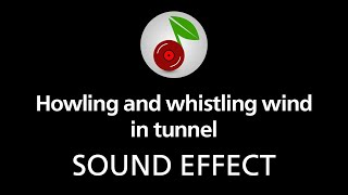 Howling and whistling wind in tunnel (looped), sound effect