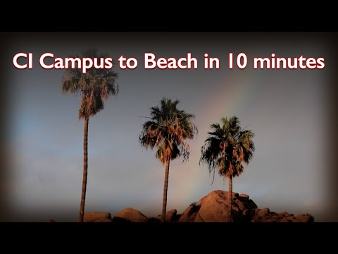 Campus to Beach
