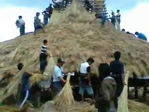 Traditional House of SUmba: Throwing the Grass!
