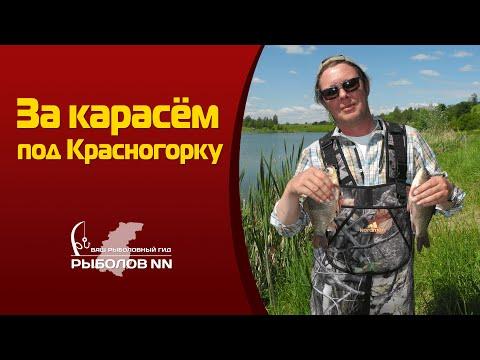 открытие летней рыбалки в нижегородской области