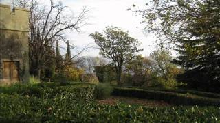 Алупка. парк(парк!!!!=), 2012-01-04T16:17:23.000Z)