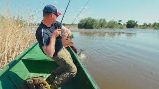 видео Рибалка на риболовній базі