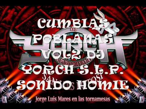 Mix Cumbias Poblanas 2018 Vol 2 - Dj Yorch S.L.P. Sonido Homie