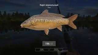 Русская рыбалка 3.8|Озеро|Карп-Карась