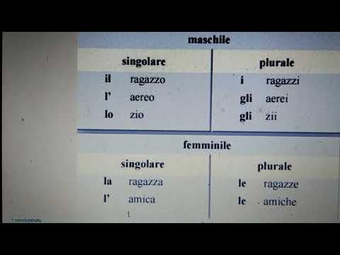 Род и число имен существительных в итальянском языке.