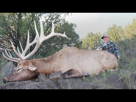 My First Bull Elk  – I'll Never Top This