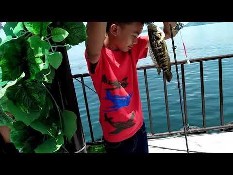 Fishing In Taal Lake (Talisay, Batangas)/ Tagaytay City - Philippines