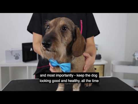 Karhia Pro - World's first coat stripper for wire-haired dogs